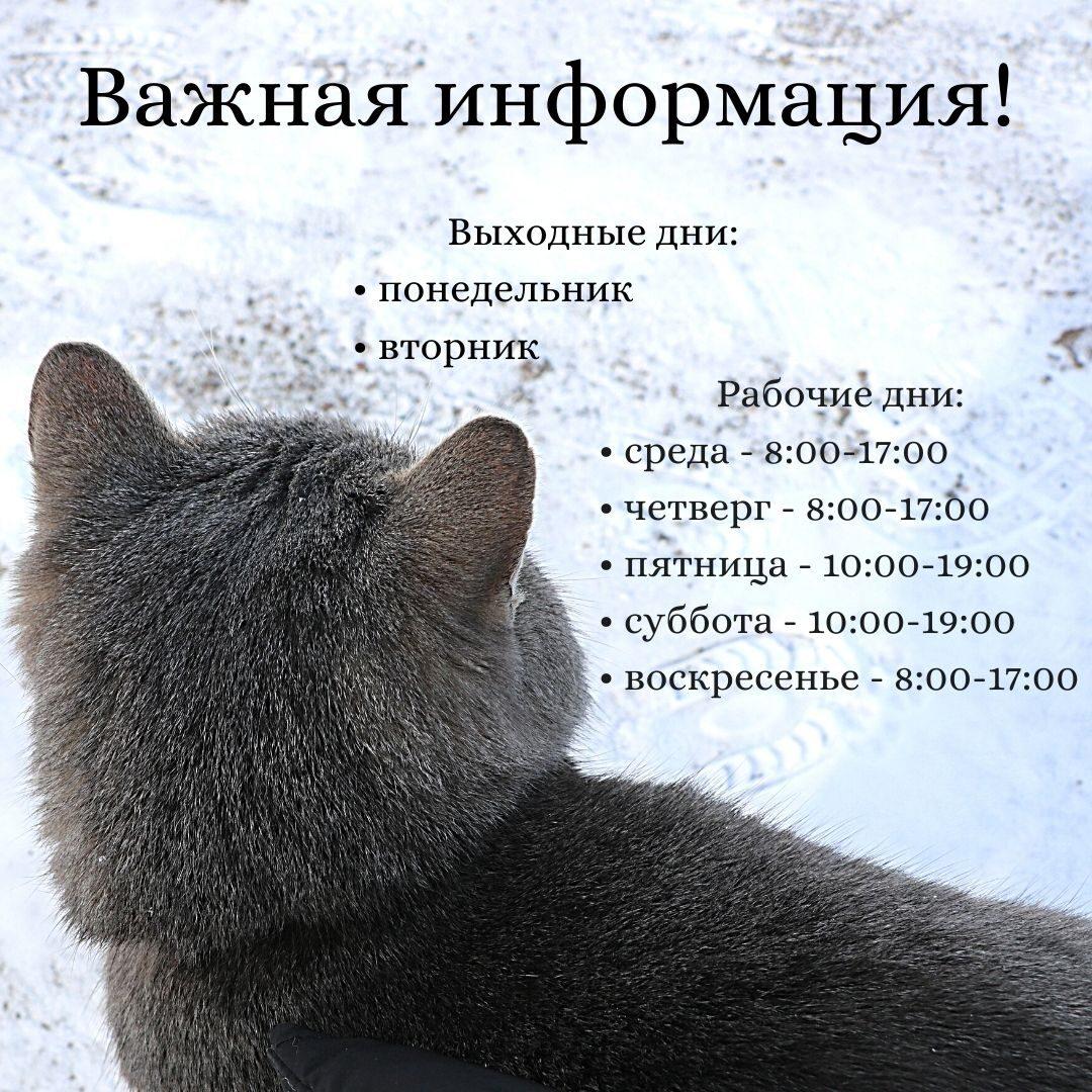 Внимание! Важная информация!